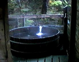 This is a jpeg of the Community Tub or Upper Bathhouse.