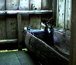 This is a jpeg of the New Bathhouse stalls.